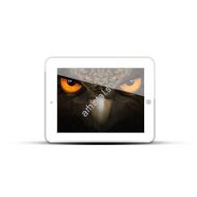 EagleEyes HD Plus для iPad