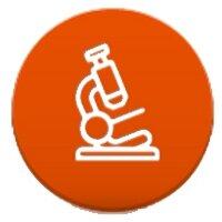 Медицина и образование